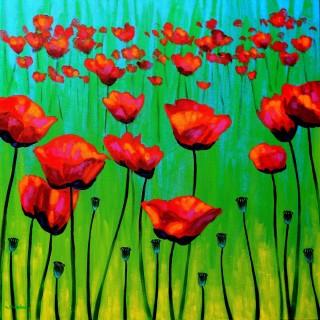 Poppy Dance - Acrylic on box canvas 28