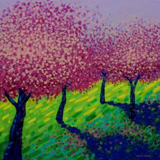 4 Cherry Blossom Trees acrylic on stretched canvas 20inches x 20inches €650 SOLD