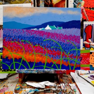 Rainbow Meadow -Project 1